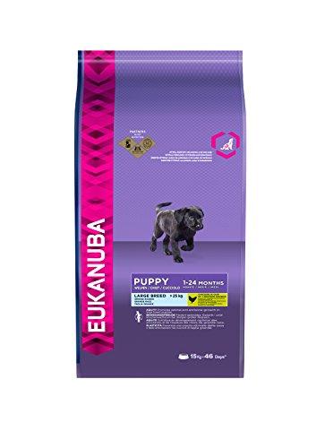 Eukanuba Premium Hundefutter für Welpen großer Rassen, Trockenfutter mit Huhn (1 x 15 kg)
