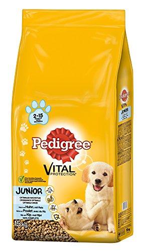 Pedigree Junior Medium Hundefutter Huhn und Reis, 1 Packung (1 x 15 kg)