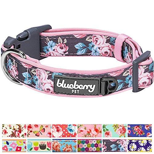Blueberry Pet 1,5cm S Klein Frühlingsgru? Rosig Bedruckt Niedliches Neopren-Gepolstertes Hundehalsband