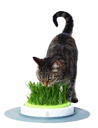 Catit Design Senses – Gras-GartenSet