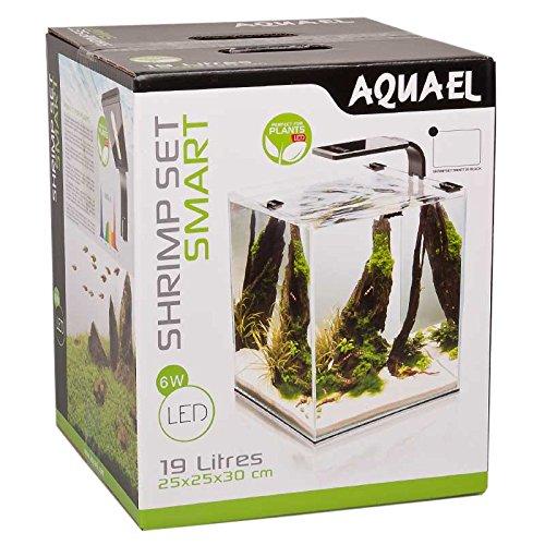 Aquael 5905546191425 Aquarium Shrimp Set Smart LED, Komplett Set Mit Morderner LED – Beleuchtung