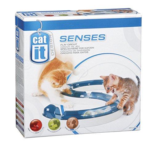 Catit Design Senses Play Circuit Spielschiene inklusive Ball