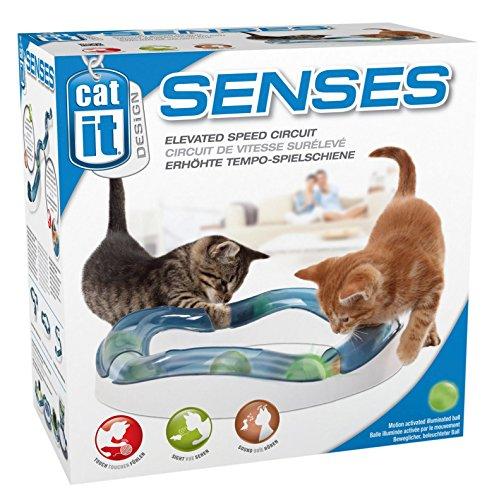 Catit Design Senses Tempo-Spielschiene