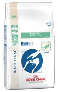 ROYAL CANIN Dental – Katzenfutter für die Zahn- und Mundhygiene 3kg