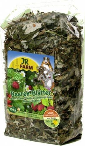 JR Nager Beeren-Blätter 100 g