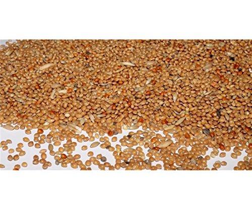 Wellensittichfutter mit Jod und Honig 3,5 kg Anhaltiner Premiumfutter