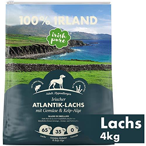 Irish Pure Adult Atlantik-Lachs mit Kelp-Alge & Gemüse – Hypoallergenes Trockenfutter für Hunde, Hoher Fleischanteil, Getreidefrei, Sensitiv, Hundetrockenfutter, Hundefutter für alle Rassen (4kg)