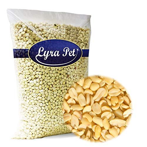 Lyra Pet® 25 kg Erdnusskerne Splits Erdnussbruch Vögel Erdnüsse Wildvogelfutter